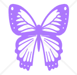 Butterfly Decal (Free Shipping)