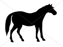 Horse Silhouette Decal (Free Shipping)