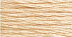 DMC 6-Strand Embroidery Cotton 8.7yd-Light Tawny