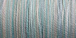 Sulky Blendables Thread 12wt 330yd-Glacier