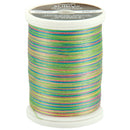 Sulky Blendables Thread 30wt 500yd-Summertime