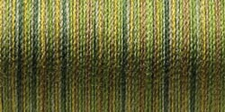 Sulky Blendables Thread 12wt 330yd-Moss Medley