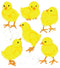 Jolee's Boutique Dimensional Stickers-Baby Chicks