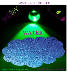 SPOTLIGHT SERIES: WATER