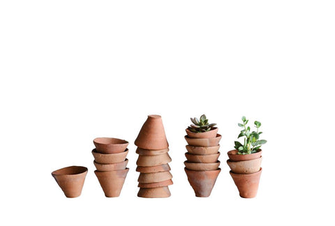 VINTAGED TERRA COTTA POT