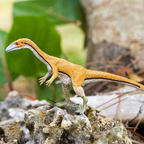 COELOPHYSIS PLANTER ACCESSORY