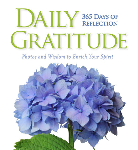 A Year of Daily Gratitude // CT2020