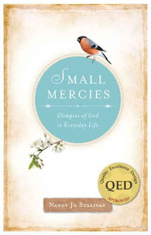 Small Mercies: Glimpses of God in Everyday Life (NONE)