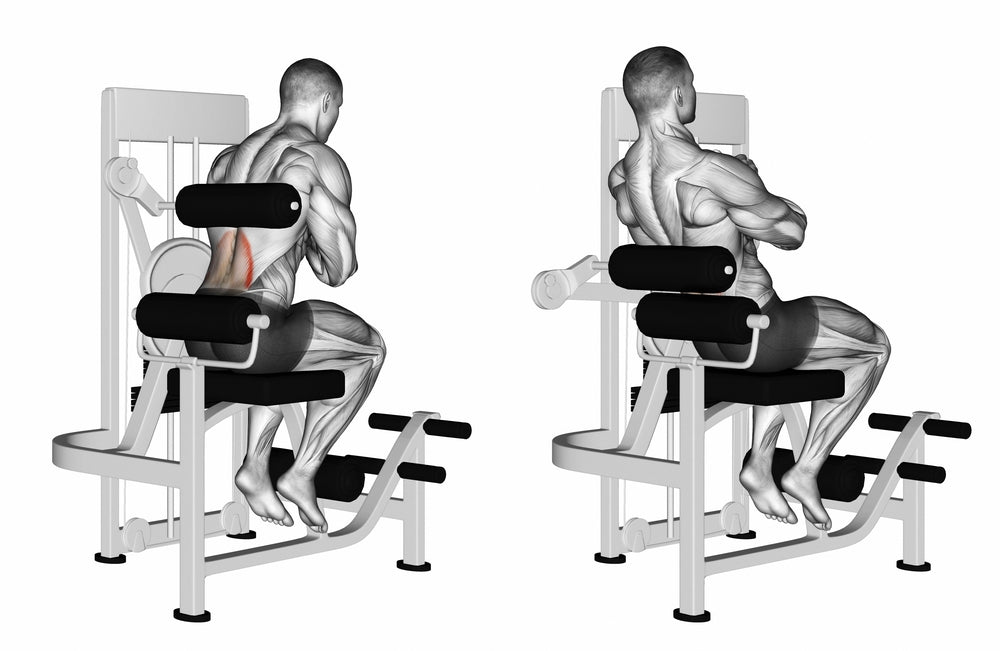 Back Extension on a Back Extension Machine