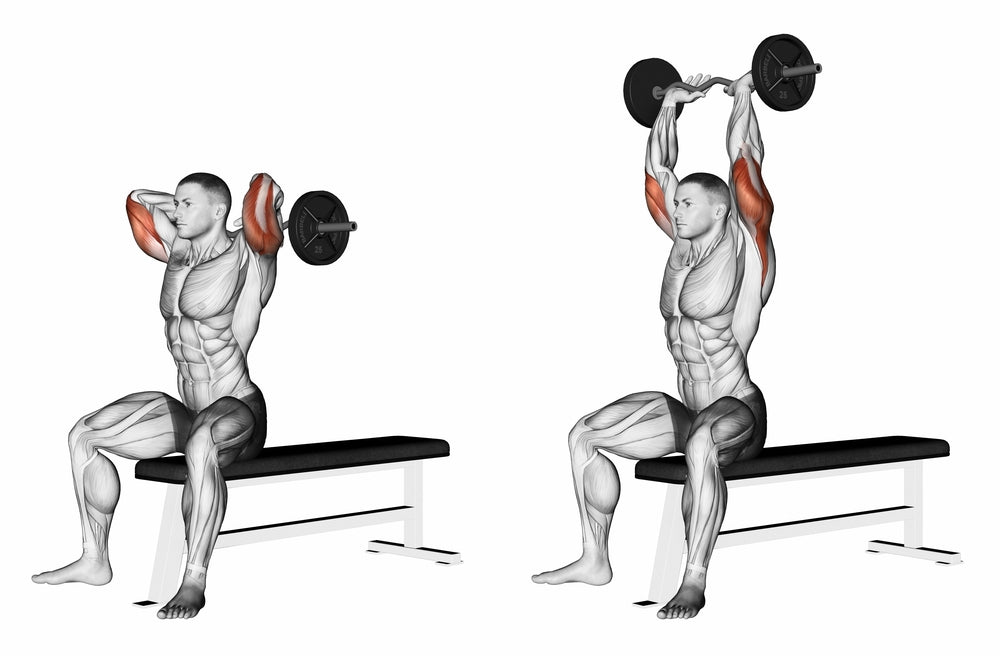 Overhead Triceps Press