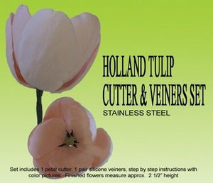 TULIP, HOLLAND