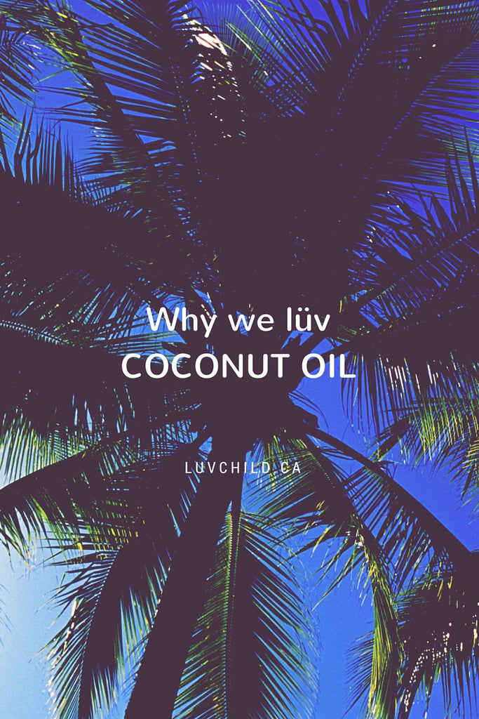 Why we lüv Coconut Oil