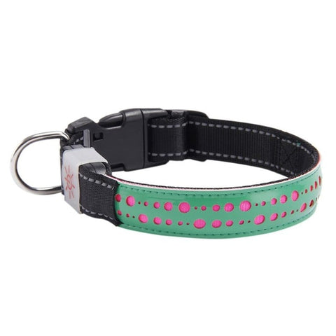 USB Rechargeable LED Lighted PU Leather Pet Dog Collar