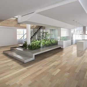 Amarosa Luminoso Ash Hardwood in Open Space Room Scene