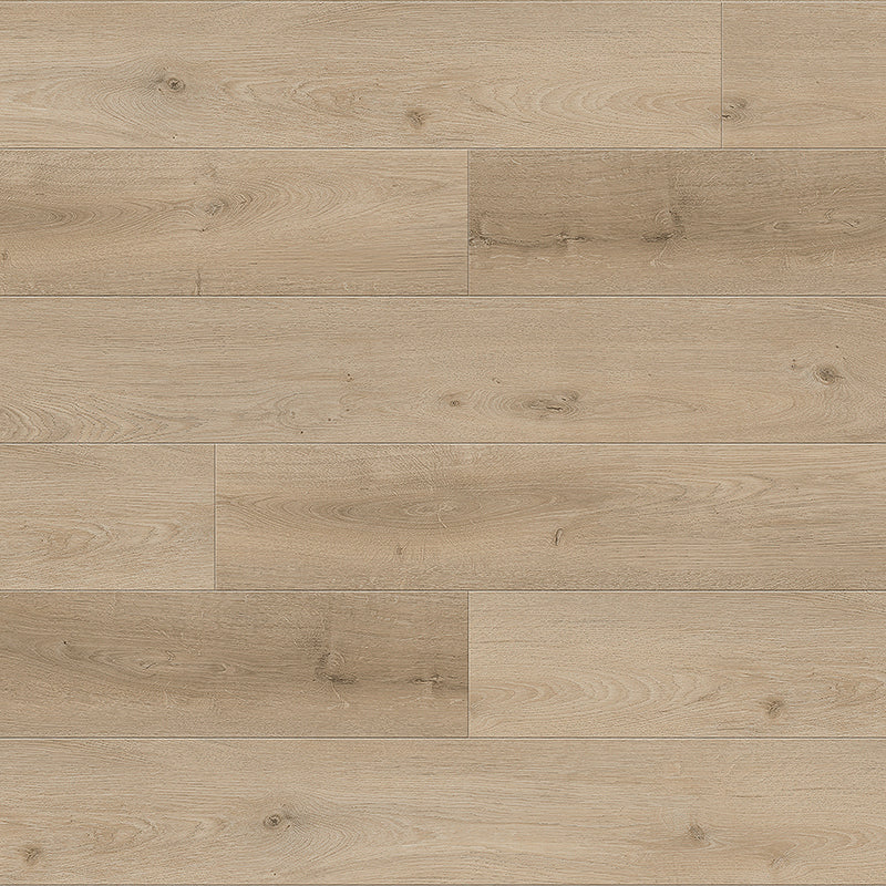 California Dreamin' Dry Back Vinyl Plank Flooring from the Journey Collection by Divine