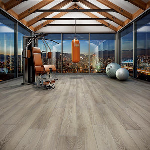 Voyage II Viva Zapata! Oak Luxury Vinyl in Gym