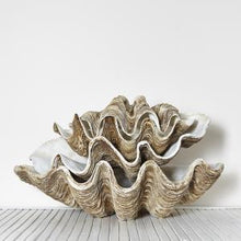 Polyresin Clam - Vintage Colour