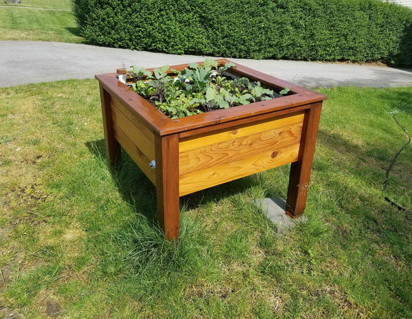 Self-Watering elevated perennial garden. Cedar raised beds, container gardens, and veggie/vegetable gardens featuring GardenWell sub-irrigation to create wicking beds for growing your own food.
