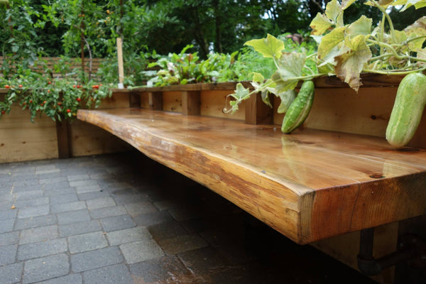 Self-Watering elevated patio garden. Cedar raised beds, container gardens, and veggie/vegetable gardens featuring GardenWell sub-irrigation to create wicking beds for growing your own food.