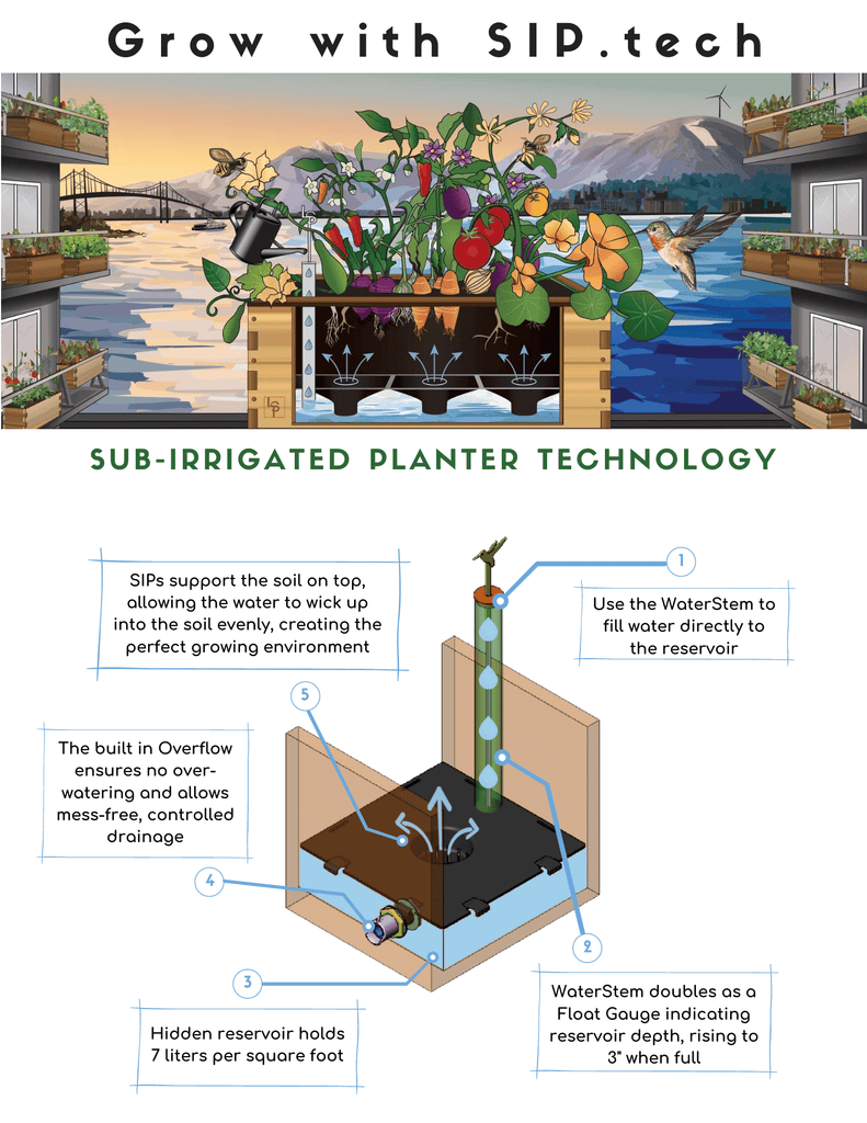 How a sub-irrigated selfwatering wicking bed works
