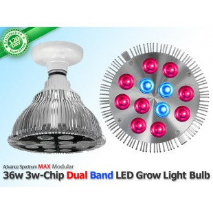 36 Watt Advanced Spectrum MAX DUAL BAND 3w-Chip LED Grow Bulb