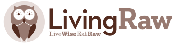 Living Raw Treats