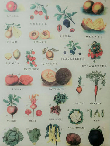Cavallini Fruits And Vegetables Chart Vintage Style Poster