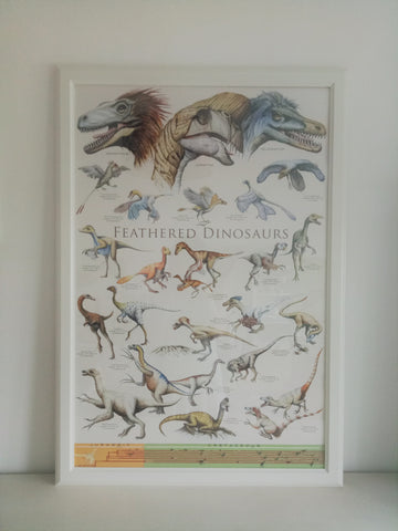 Natural History Feathered Dinosaurs Period 2 Poster