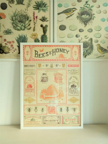 Cavallini IV Bees & Honey Poster