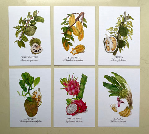 Fruits of Singapore Postcard Set (Set of 12)