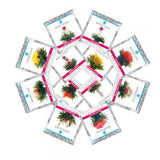 Grosche Pomegranate Blooming Tea Variety 12 Pack