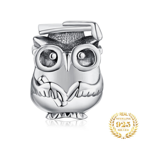 Sterling Silver Wise Owl Charm