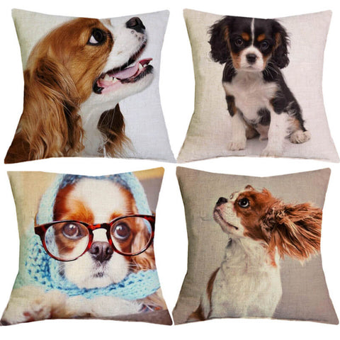 Beautiful Cavalier King Charles Spaniel Pillow Cover