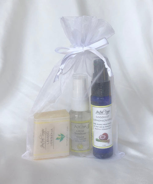 Hand Sanitizer Spray, Rinse Free Hand Gel and Soap Combo Pack