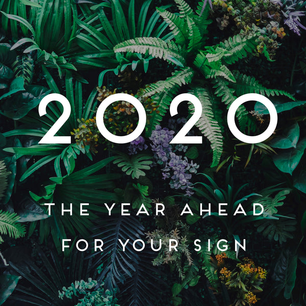 BUNDLE AND SAVE: 2020 For Your Sign + YOU WERE BORN FOR THIS: Astrology for Radical Self Acceptance