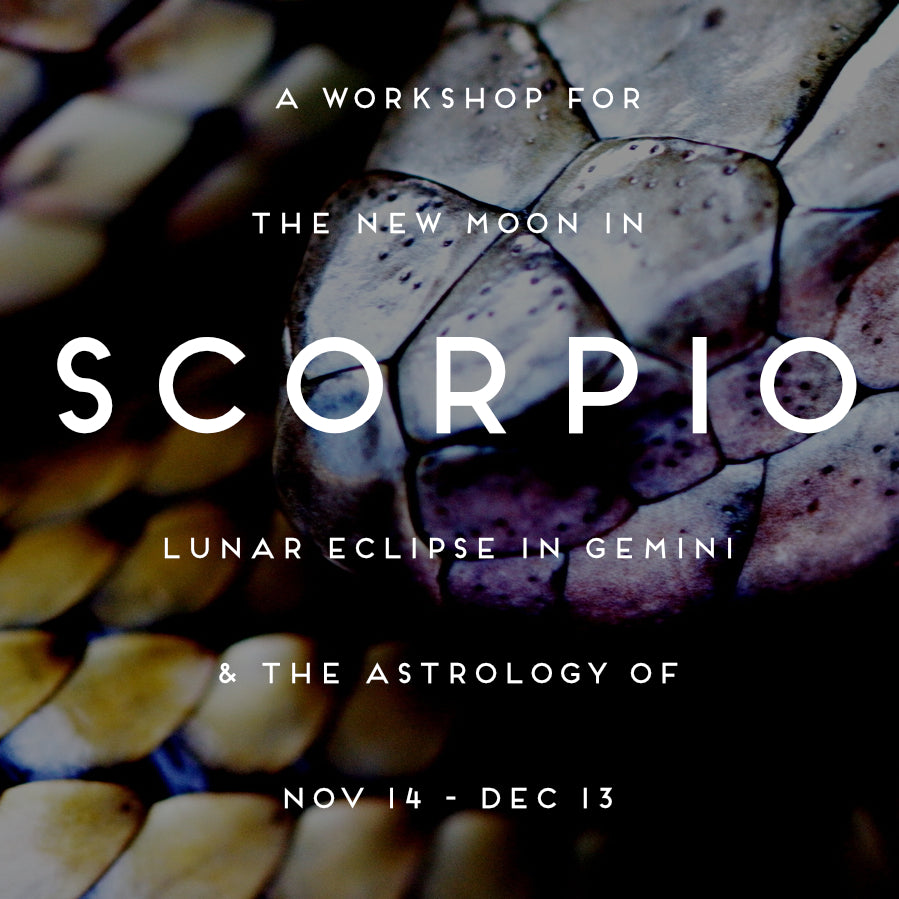 A Workshop for the New Moon in Scorpio, Lunar Eclipse in Gemini, and the Astrology of Nov 14 - Dec 13