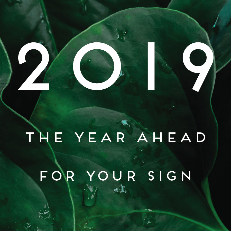 2019: The Year Ahead for Your Sign