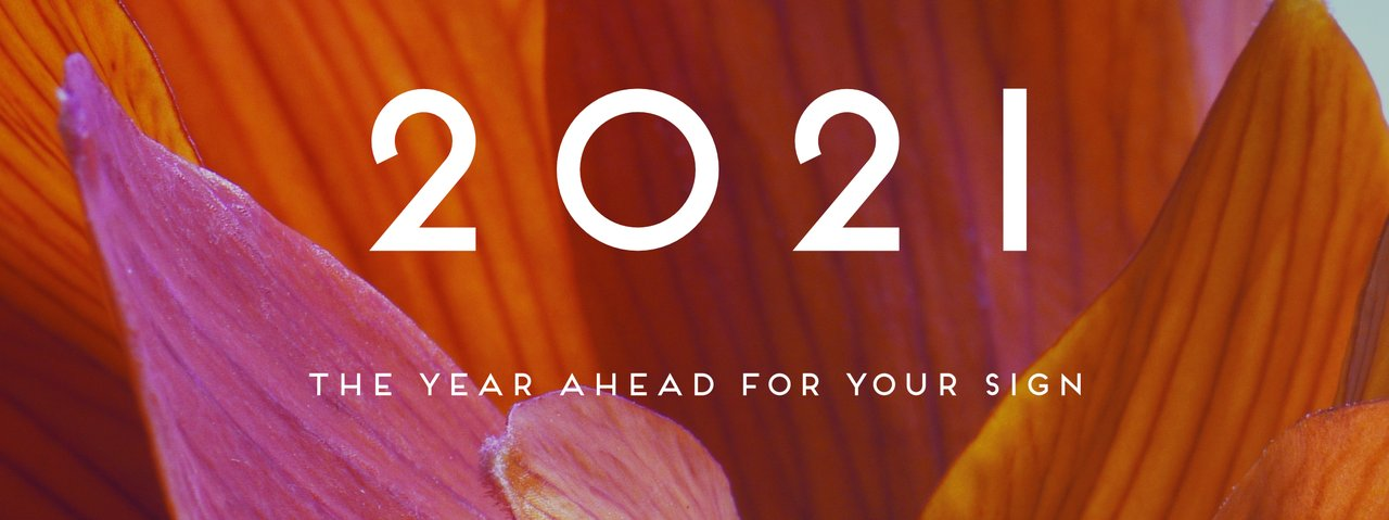 2021 Year Ahead