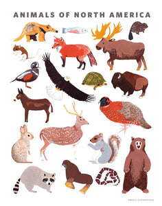 ANIMALS OF NORTH AMERICA 11 x 14 PRINT