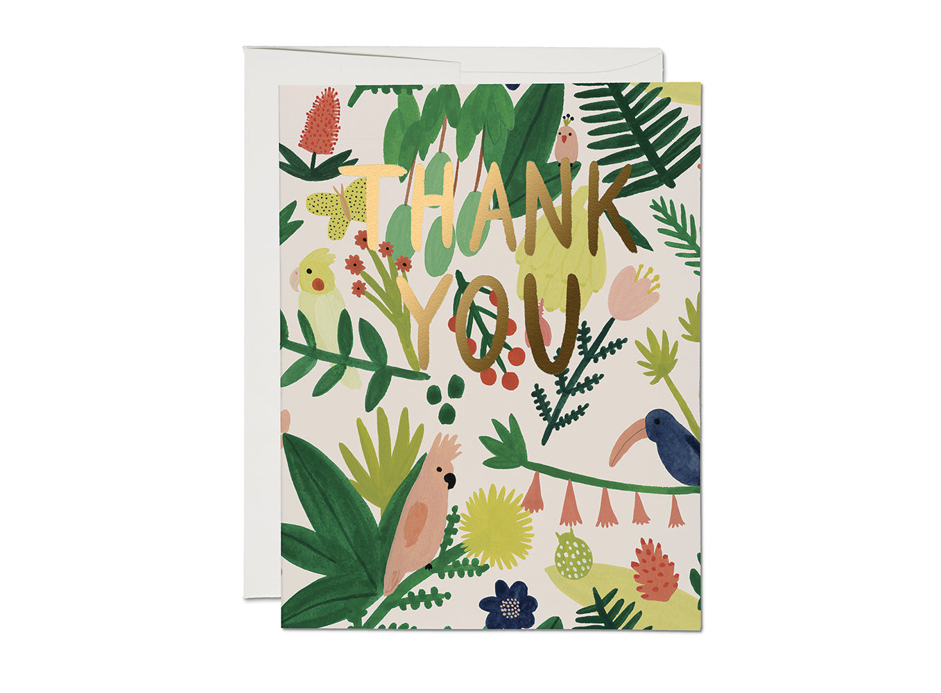 Jungle Paradise Thank You Card Set of 8