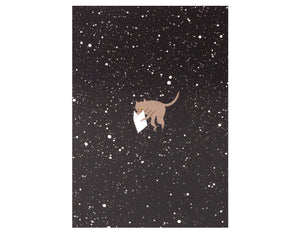 black and white space background gray cat floating in space reading