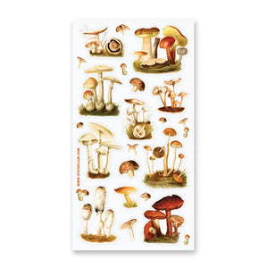 Wild Mushrooms Stickers