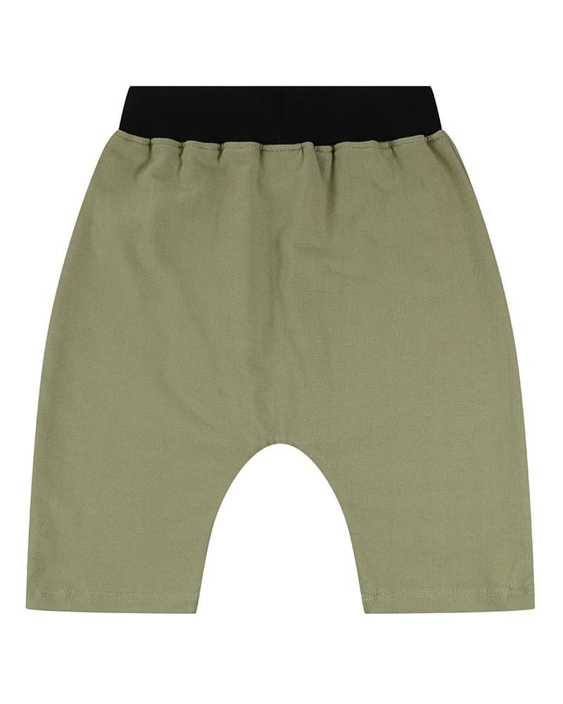 Cub Knee Shorts - Turtledovelondon