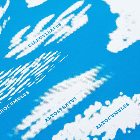 Close up of James Brown Cloud Classification print