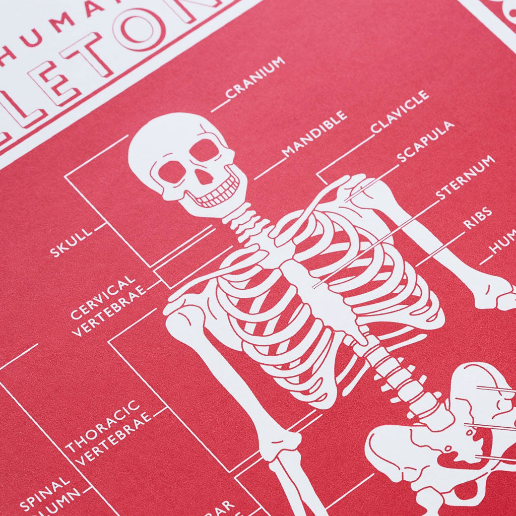 Close up of James Brown Human Skeleton print