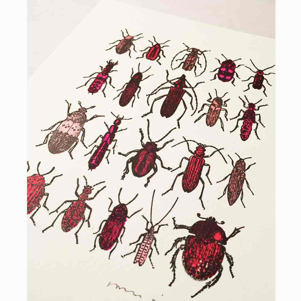 Angled shot of John Dilnot Red Beetles mini print
