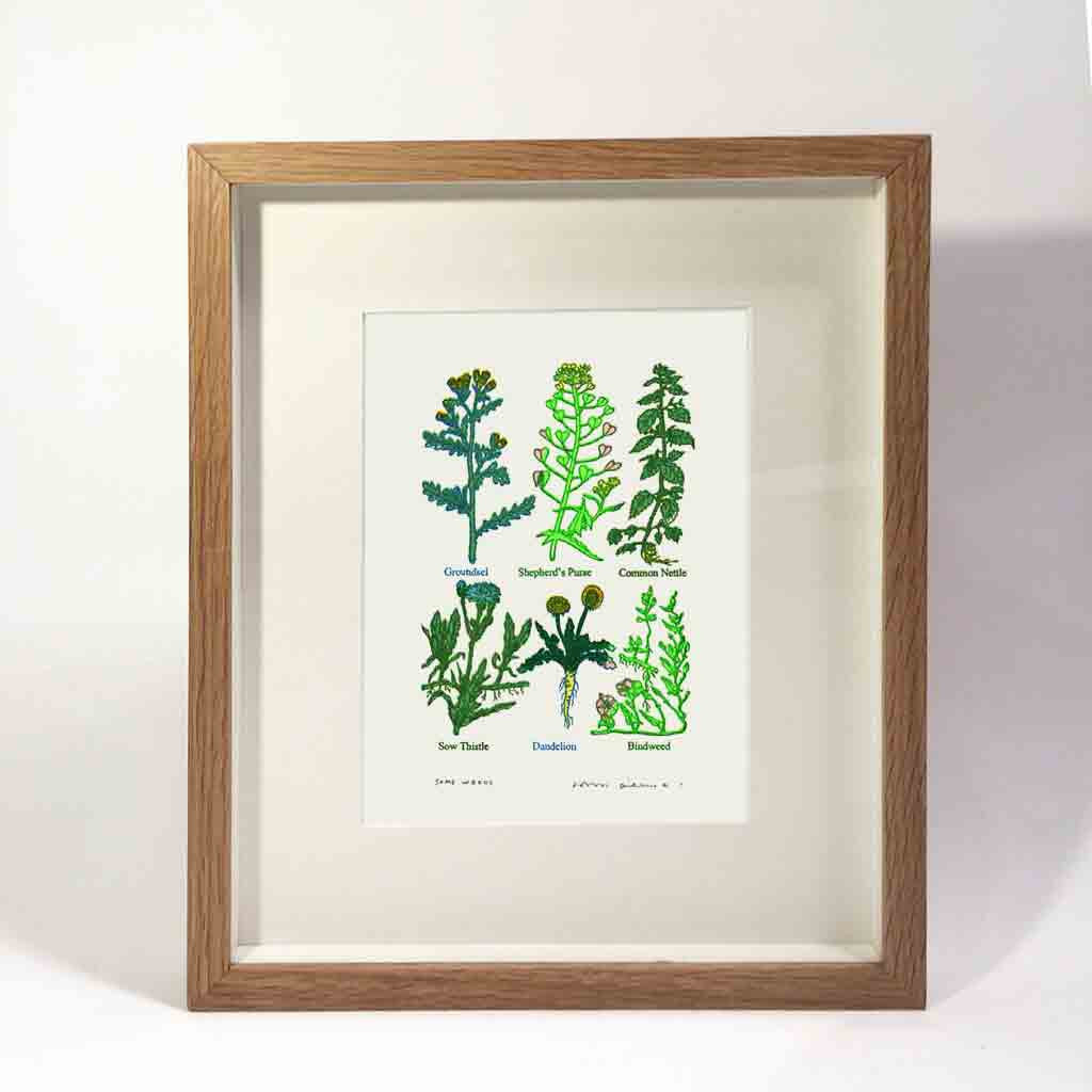 John Dilnot Some Weeds framed mini print