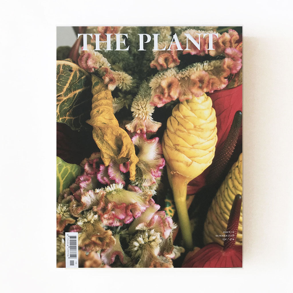 The Plant Magazine Issue 12