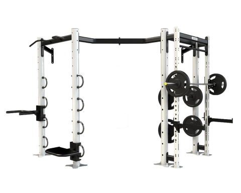 Wall Mounted Ignite Rig - First Physique