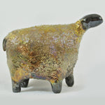 Gold Sheep